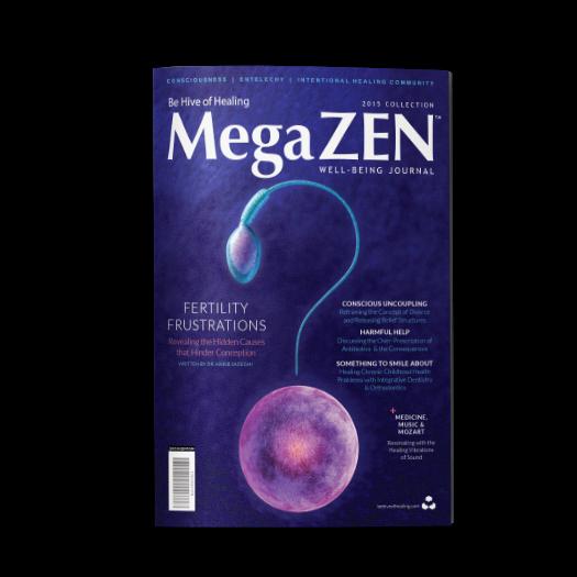 megazen_2015_solo
