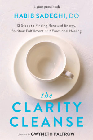 The Clarity Cleanse Book: 12 steps to finding renewed energy, spiritual fulfillment and emotional healing