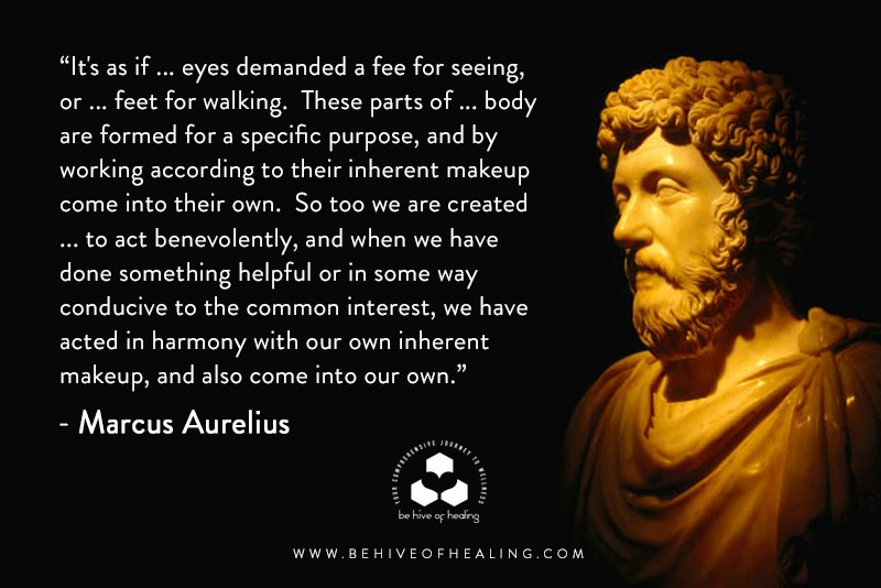 Marcus Aurelius Mediation Minute