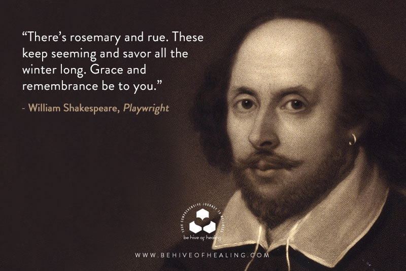 Meditation Minute with Shakespeare