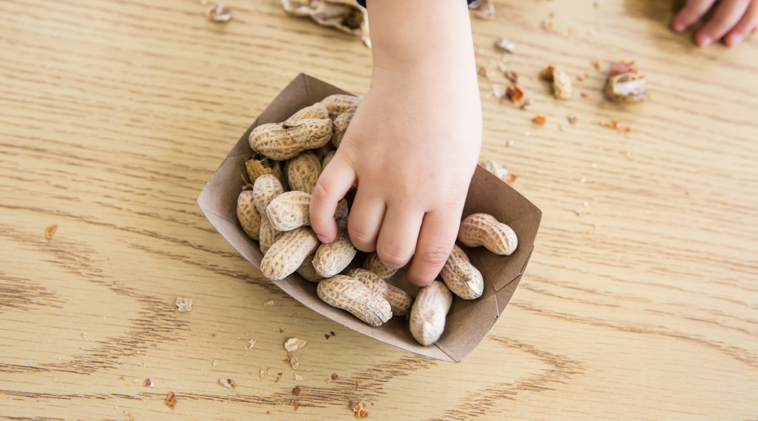 Peanut Allergy Possible Treatment