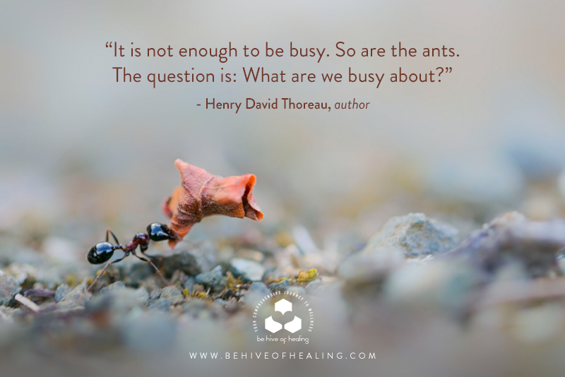 Meditation Moment with Henry David Thoreau
