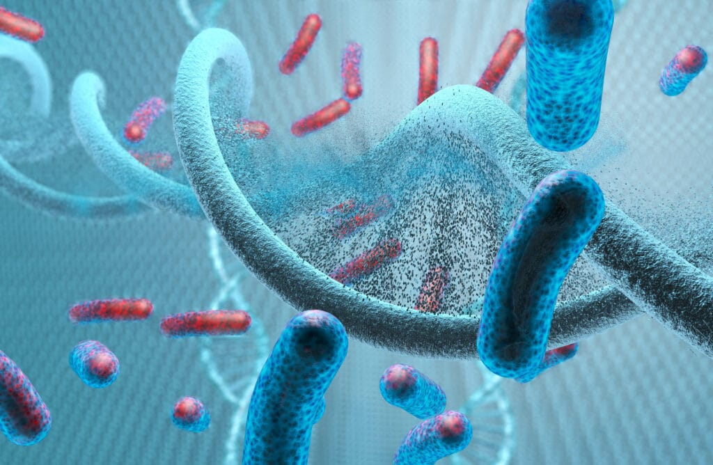 Using Viruses to Kill Cancer: Common cold virus destroys bladder tumors